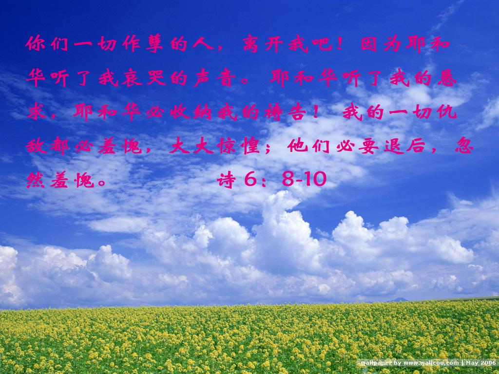 背景 壁纸 草原 风景 天空 桌面 1024_768